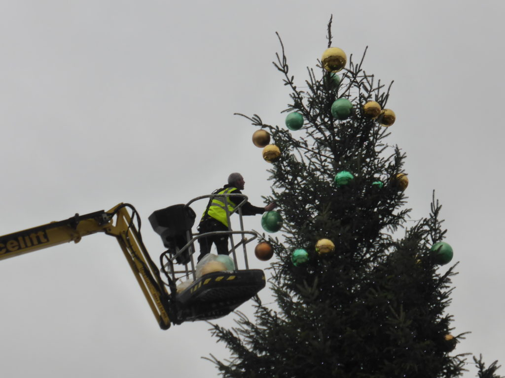 The Christmas tree goes up in Somerset House courtyard